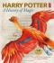 Kniha - Harry Potter - A History of Magic: The Book of the Exhibition